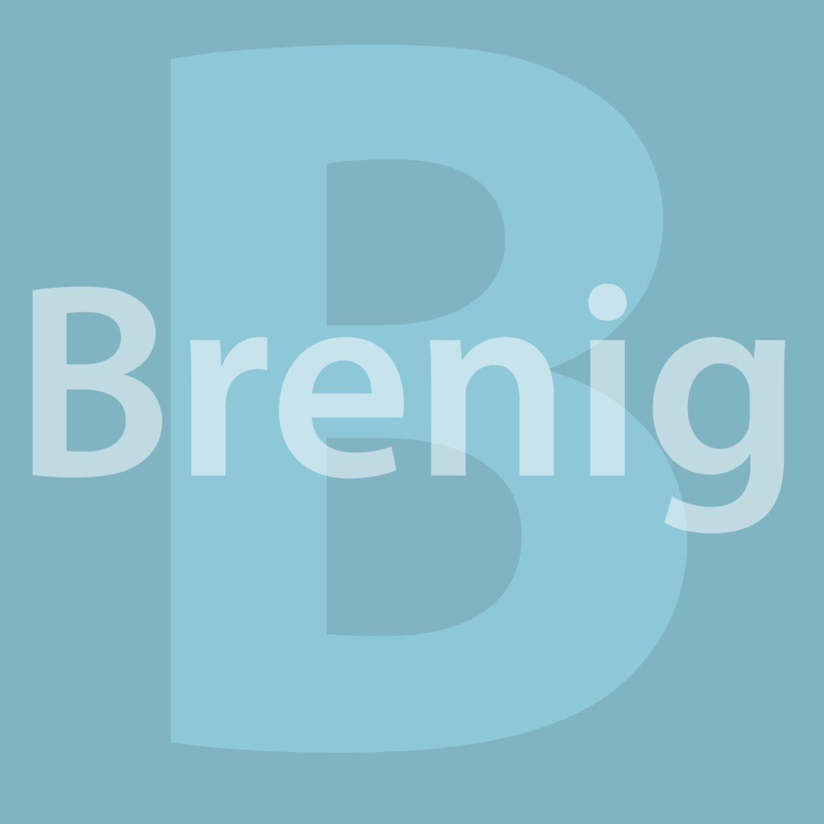Team Brenig
